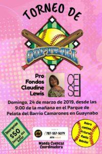 Torneo de Softball @ Guaynabo